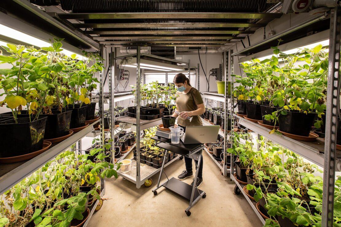 Elicit Plant a participé au Forum Agriculture Innovation le 26 novembre 2019