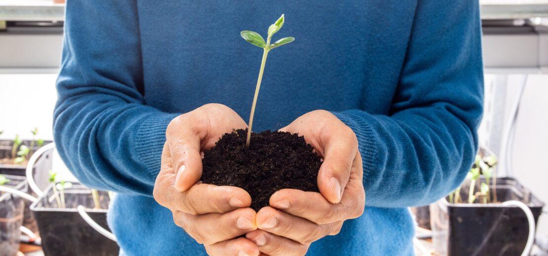 L'équipe Elicit Plant répond à vos questions.